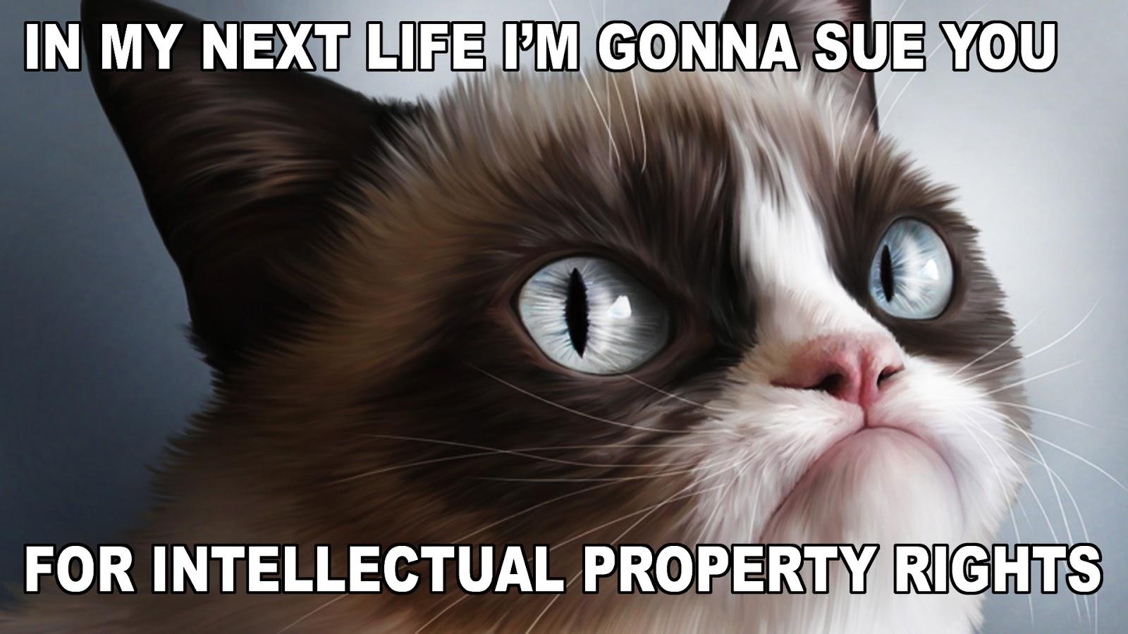 O papel cultural dos memes na sociedade informacional e seus litígios com o direito autoral